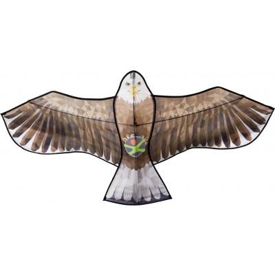 Papagaio Águia TK