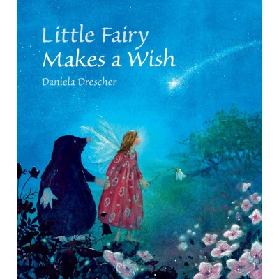 Little Fairy Makes a Wish 3+